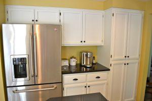 Stainless Steel Fridge Kitchen Renovation