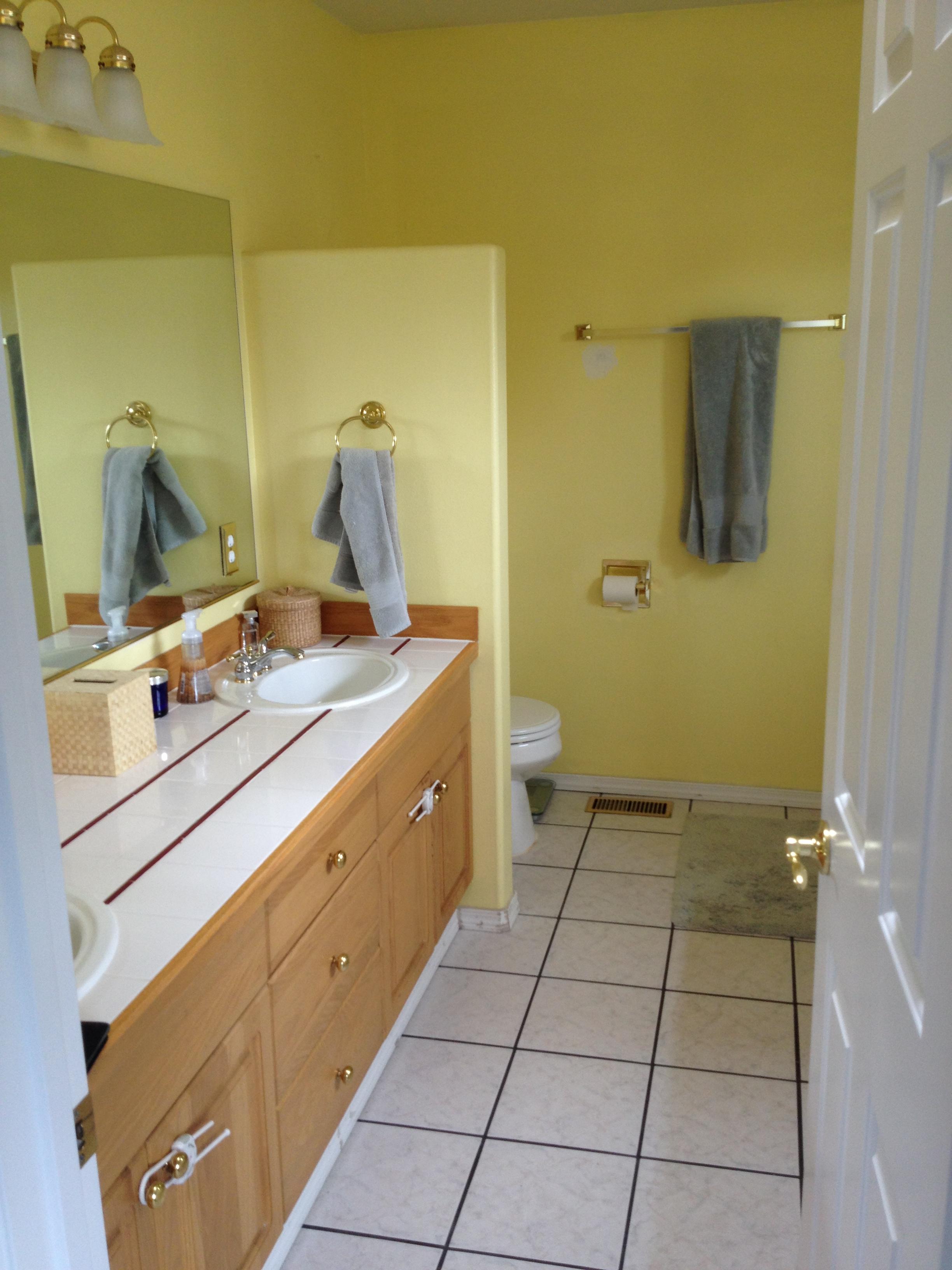 Before Bathroom Home Run Solutions
