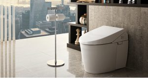 Blog Bath Remodel Contractor Toto Toilet Neorest Mill Creek WA