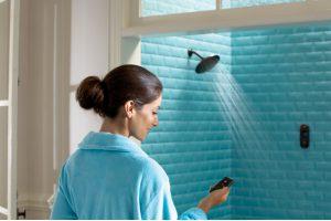 Blog Moen ioDigital Shower Bath Remodel Mill Creek WA